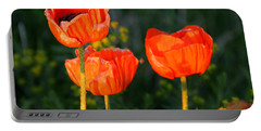 Portable Battery Charger featuring the photograph Sunset Poppies by Debbie Oppermann