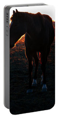 Portable Battery Charger featuring the photograph Sunset Splendor by Robert McCubbin