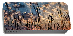 Portable Battery Charger featuring the photograph Sunset Through The Grasses by Don Schwartz