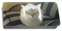 Sunshine Kitty Portable Battery Charger
