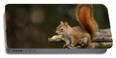 Surprised Red Squirrel With Nut Portrait Portable Battery Charger