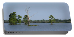 Portable Battery Charger featuring the photograph Swamp Cypress Trees by Joseph Baril