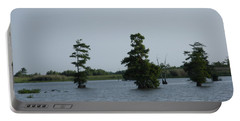 Portable Battery Charger featuring the photograph Swamp Tall Cypress Trees  by Joseph Baril