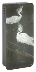 Swampbirds Portable Battery Charger by Terry Frederick