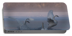 Portable Battery Charger featuring the photograph Swans Chasing by Patti Deters