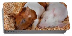 Sweet Piglets Nap Art Prints Portable Battery Charger
