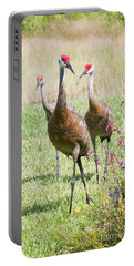 Sweet Sandhill Crane Family Portable Battery Charger