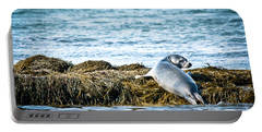 Sweet Seal Portable Battery Charger by Cheryl Baxter