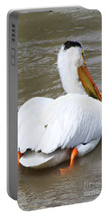 Portable Battery Charger featuring the photograph Swimming Away by Alyce Taylor