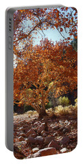 Sycamore Trees Fall Colors Portable Battery Charger by Tom Janca