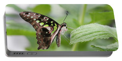Tailed Jay Butterfly #3 Portable Battery Charger