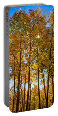 Tall Aspen With Sunstar Portable Battery Charger