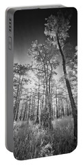 Tall Cypress Trees Portable Battery Charger