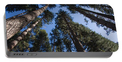 Talls Trees Yosemite National Park Portable Battery Charger