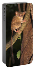 Portable Battery Charger featuring the photograph Tarsius Tarsier  by Sergey Lukashin