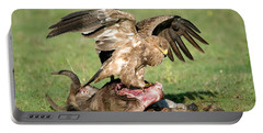 Tawny Eagle Aquila Rapax Eating A Dead Portable Battery Charger