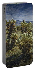Teddy Bear Cholla Cactus In California 0274 Portable Battery Charger