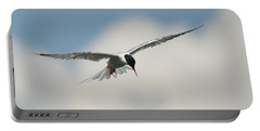 Tern In Flight Portable Battery Charger