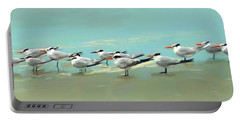Tern Tern Tern Portable Battery Charger