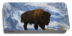 Teton Bison Portable Battery Charger by Mark Kiver