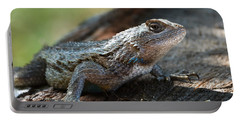 Texas Lizard Portable Battery Charger