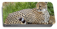 The Beautiful Cheetah Portable Battery Charger by Jason Politte