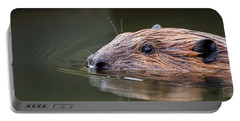 The Beaver Portable Battery Charger by Bill Wakeley