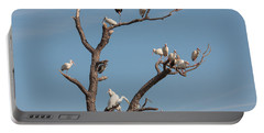 Portable Battery Charger featuring the photograph The Bird Tree by John M Bailey