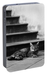 Portable Battery Charger featuring the photograph The Boss by Laura Melis