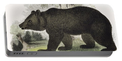 The Brown Bear, Educational Portable Battery Charger