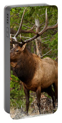 The Bull Elk Portable Battery Charger by Steven Reed