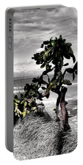 Portable Battery Charger featuring the photograph The Catus Tree Siesta Key Florida by Tom Prendergast