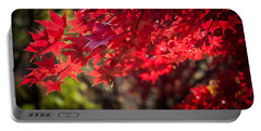 Portable Battery Charger featuring the photograph The Color Of Fall by Patrice Zinck