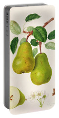 The D'auch Pear Portable Battery Charger