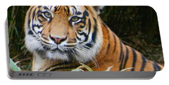 The Eyes Of A Sumatran Tiger Portable Battery Charger