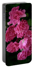 Portable Battery Charger featuring the photograph The Fence Roses by Louise Kumpf