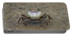 The Fiddler Crab On Hilton Head Island Portable Battery Charger