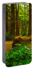 The Forest Of Golden Gate Park Portable Battery Charger