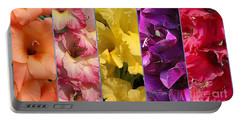 The Gladioli Of Summer Portable Battery Charger by Dora Sofia Caputo Photographic Art and Design