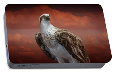 Portable Battery Charger featuring the photograph The Glory Of An Eagle by Holly Kempe
