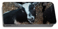 Portable Battery Charger featuring the photograph The Goat With The Gorgeous Eyes by Verana Stark
