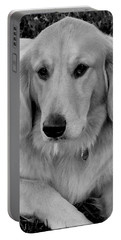 The Golden Retriever Portable Battery Charger by James C Thomas