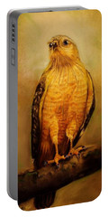 The Hawk Portable Battery Charger by Jean Cormier