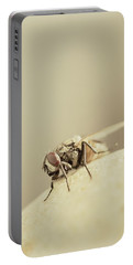 The Housefly II Portable Battery Charger