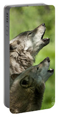 Portable Battery Charger featuring the photograph The Howling by Wolves Only