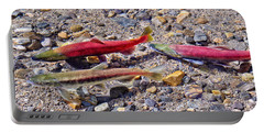 Portable Battery Charger featuring the photograph The Interloper by Jim Thompson