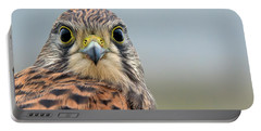 The Kestrel Face To Face Portable Battery Charger by Torbjorn Swenelius
