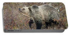 Portable Battery Charger featuring the photograph The Last Berry by Jack Bell