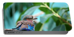 The Lilac Breasted Roller Portable Battery Charger