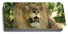 The Lion King Portable Battery Charger